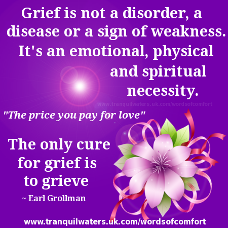 quotes of comfort after loss quotesgram