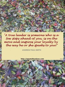 A True Leader APS Quote